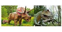 Dinosaurier-Ausflüge